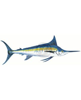 Blue Marlin Decal